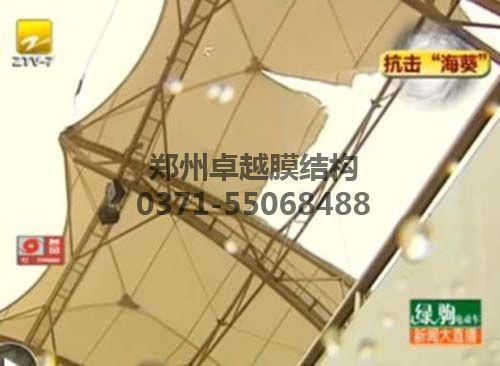 电视报道的在台风作用下被破坏的看台膜结构