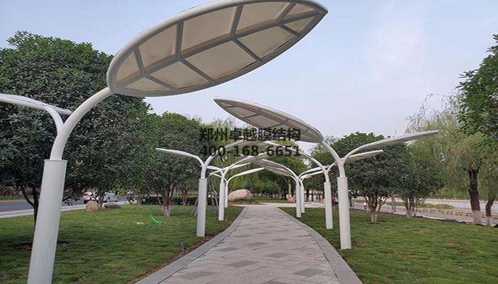 河南济源湨河景膜结构观伞